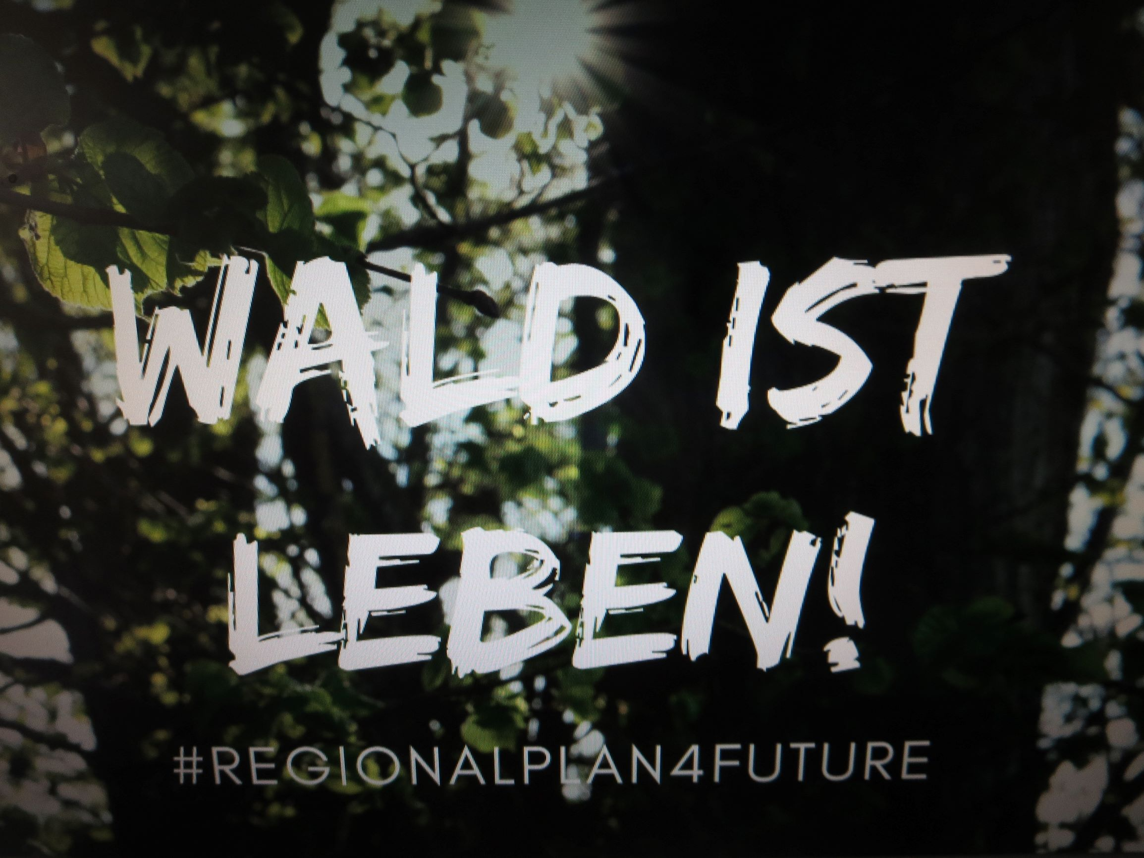 Dialog-Reihe Altdorfer Wald